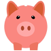 piggy icon